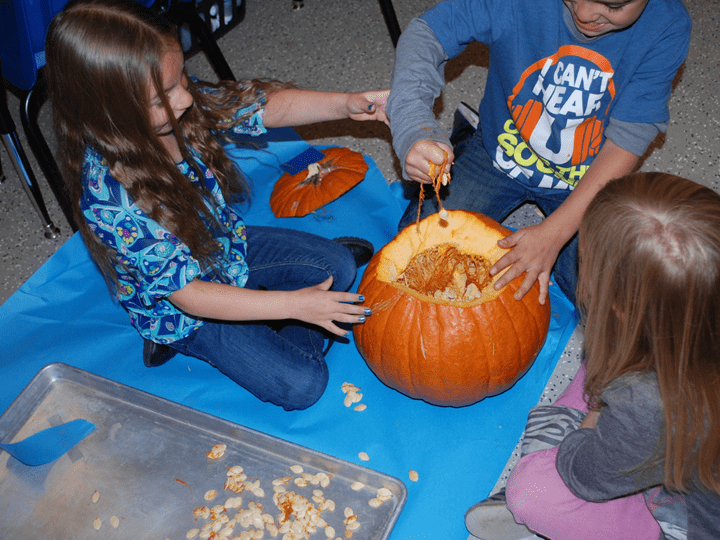 Using Pumpkins to Teach STEM